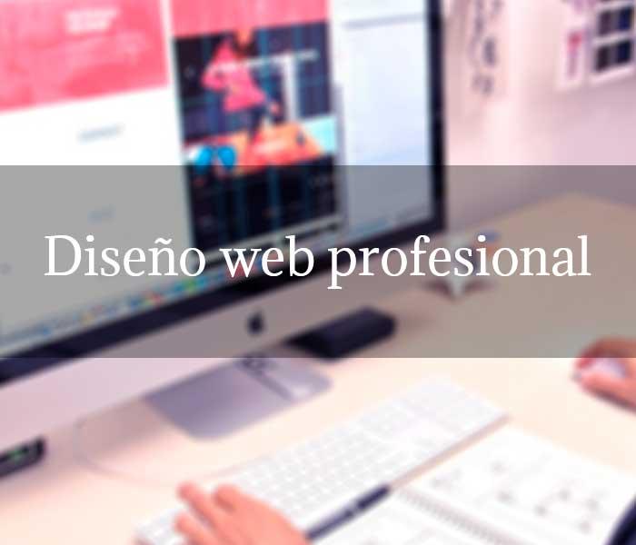 Diseño web profesional