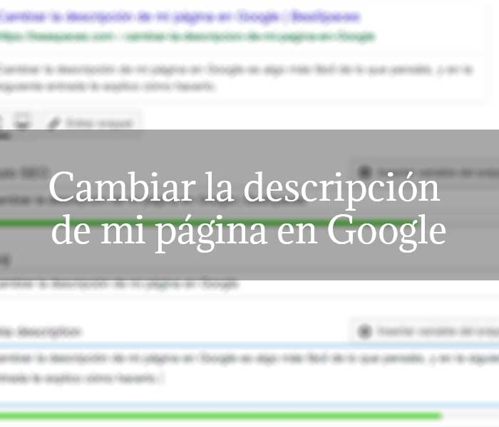 Cambiar la descripción de mi página en Google