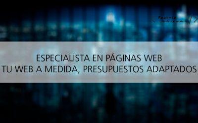 Diseñador de páginas web en Talavera de la Reina