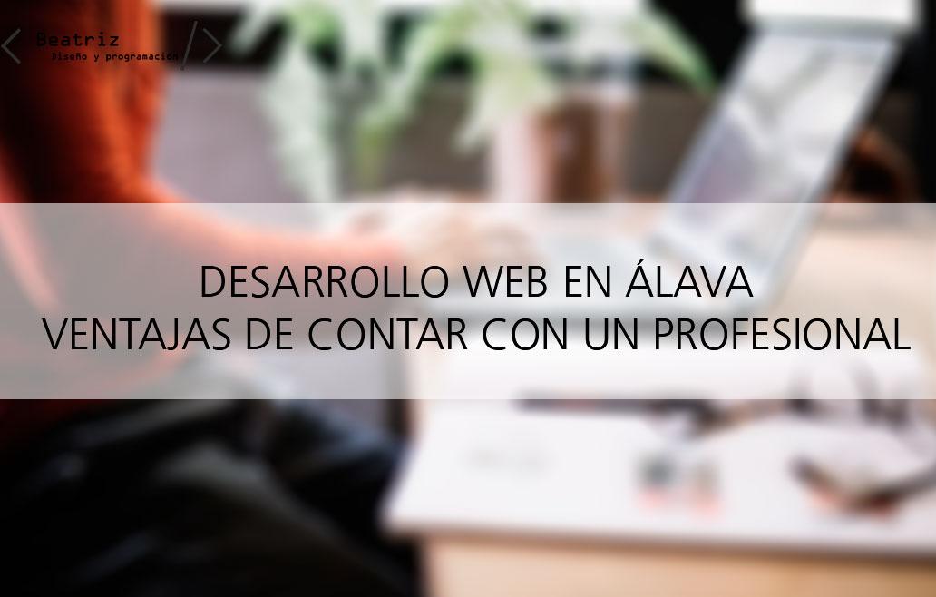 Presupuesto de desarrollo web en Álava