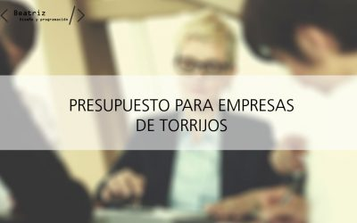 Presupuesto para páginas web en Torrijos